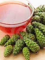 Лекарство из сосновых шишек